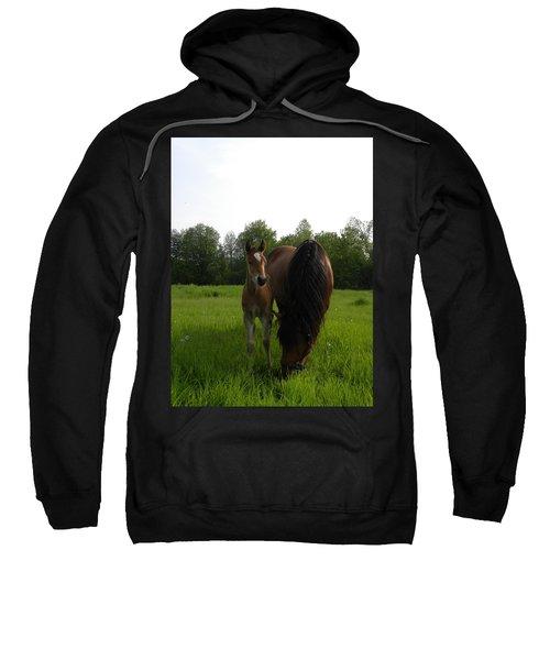 Babe With Mom Sweatshirt