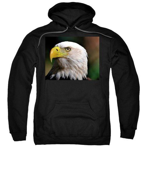 Bald Eagle Close Up Sweatshirt