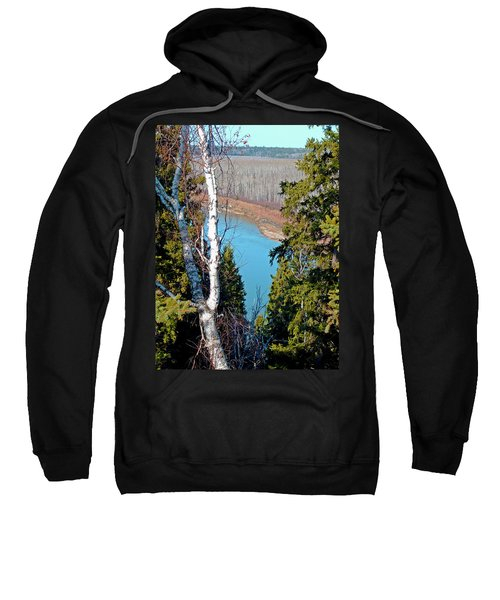 Birch Forest Sweatshirt