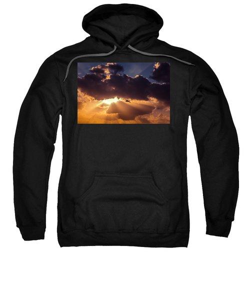 Bird In Sunrise Rays Sweatshirt