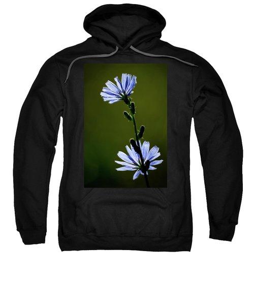 Blue Wildflower Sweatshirt