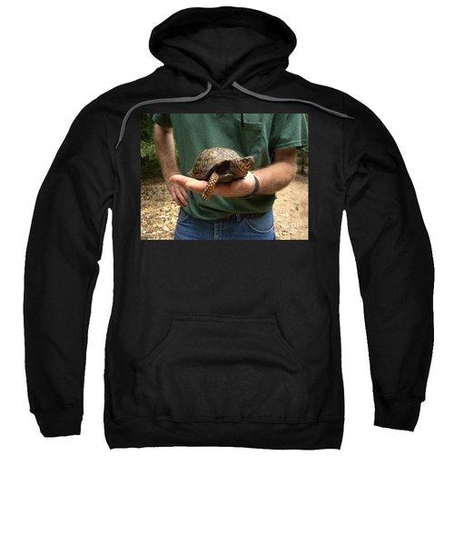 Box Turtle Sweatshirt