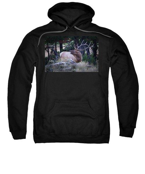 Bugling Bull Elk Sweatshirt