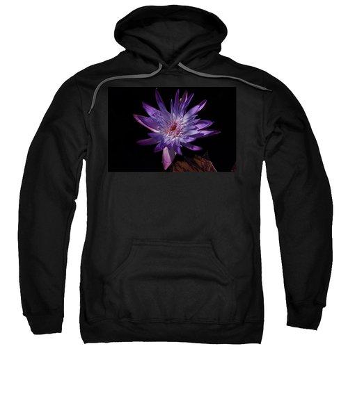 Dark Beauty Sweatshirt
