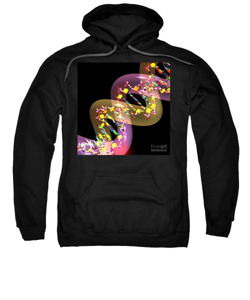 Dna 38 Sweatshirt