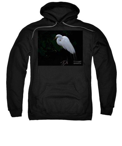 Egret On A Branch Sweatshirt