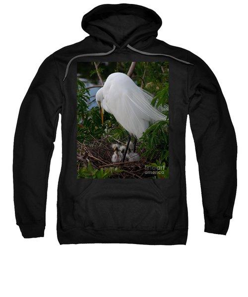 Egret With Chicks Sweatshirt