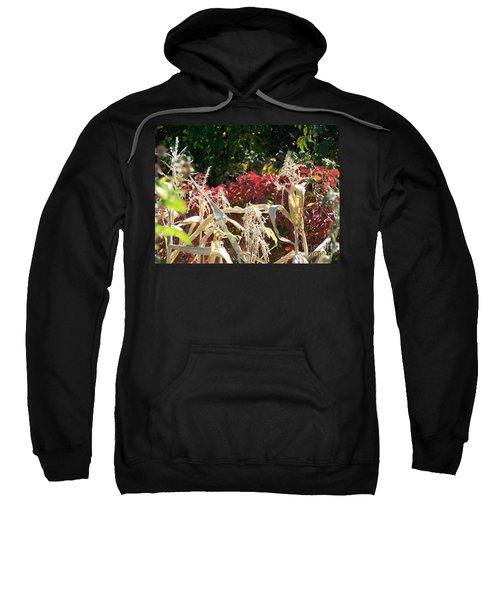 Fall Harvest Of Color Sweatshirt