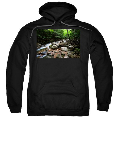 Forest Stream Sweatshirt