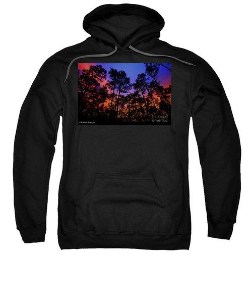 Glowing Forest Sweatshirt