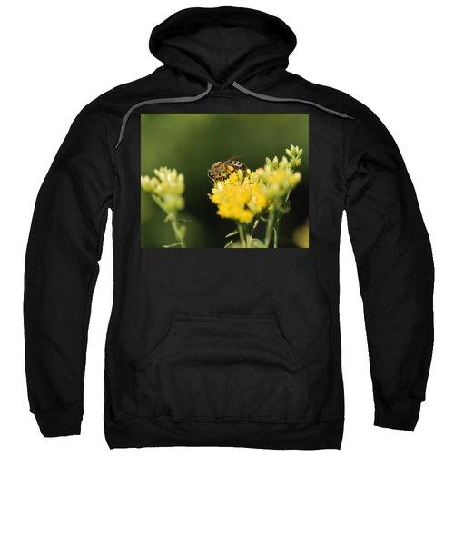 Golden Moment Sweatshirt