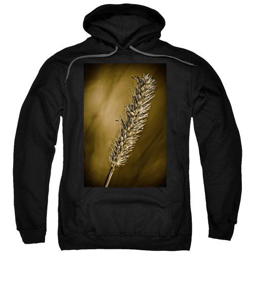 Grass Seedhead Sweatshirt
