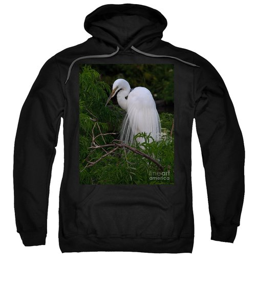 Great Egret Nesting Sweatshirt
