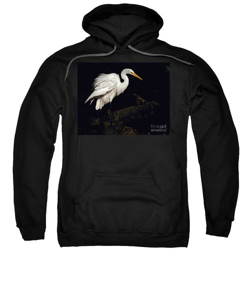 Great Egret Ruffles His Feathers Sweatshirt