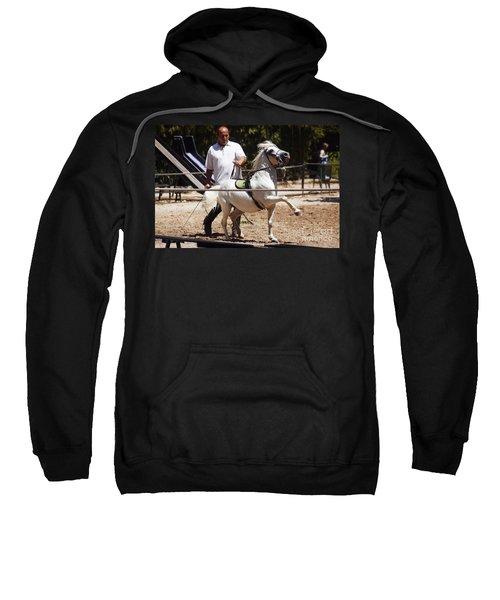 Horse Training Sweatshirt