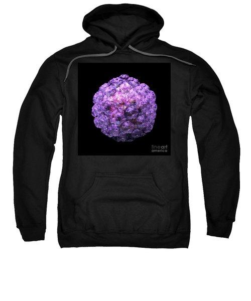 Human Papilloma Virus  10 Sweatshirt
