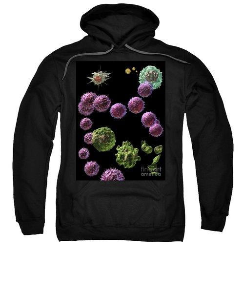 Immune Response Cytotoxic 2 Sweatshirt