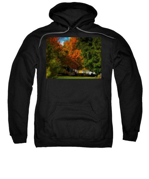 Laundry Tree Sweatshirt
