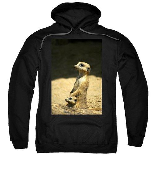 Meerkat Mother And Baby Sweatshirt