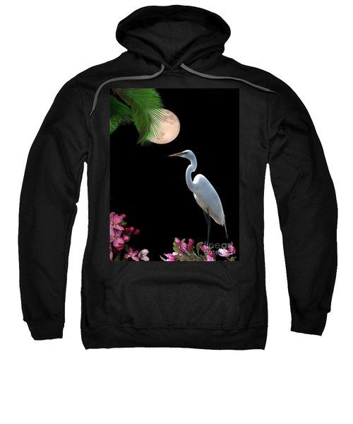 Moon Over Florida Sweatshirt