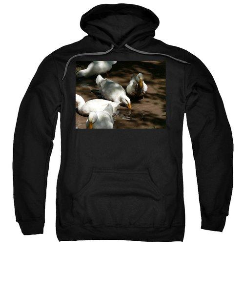 Muddy Ducks Sweatshirt