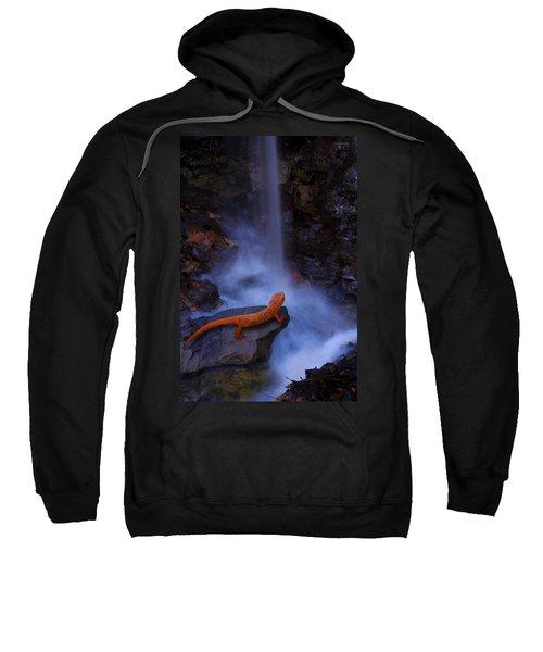 Newt Falls Sweatshirt by Ron Jones