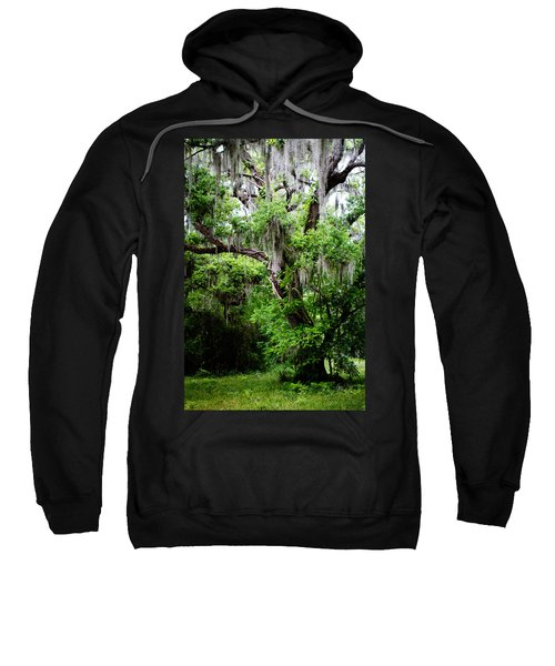 Oak And Moss Sweatshirt