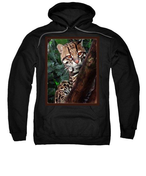 Ocelot Lookout Sweatshirt