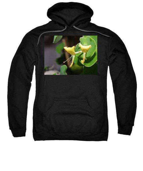 Pair Sweatshirt