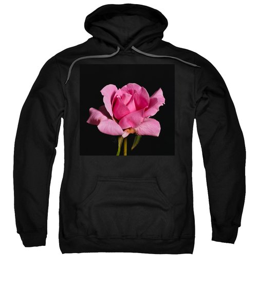 Pink Tea Rose Sweatshirt
