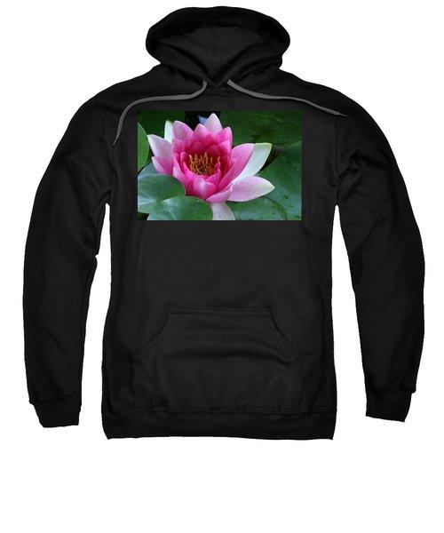 Pink Water Lily Sweatshirt