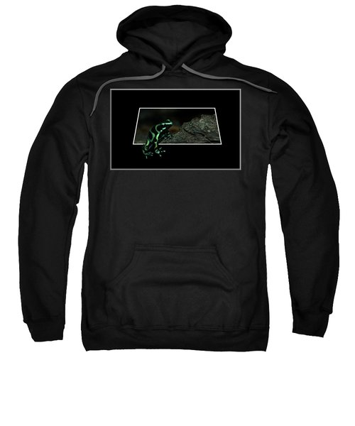 Poisonous Green Frog 02 Sweatshirt by Thomas Woolworth