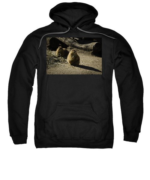 Prairie Dog Sees The Shadow Sweatshirt