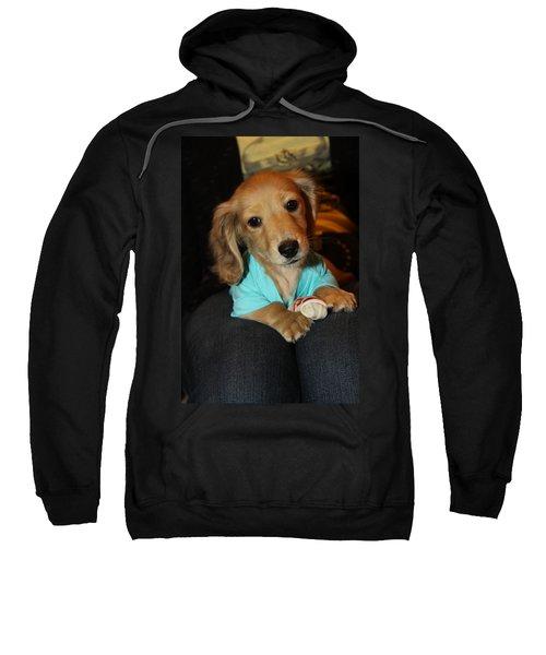 Precious Puppy Sweatshirt