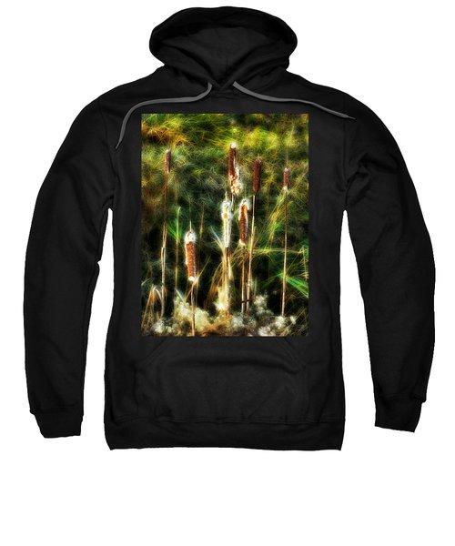 Pretty In A Ditch Sweatshirt