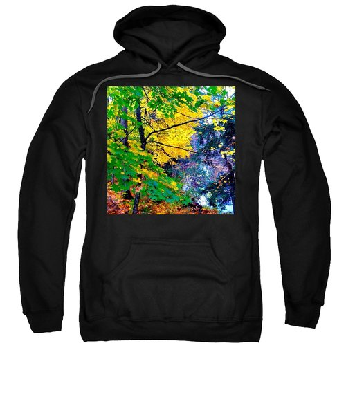Reed College Canyon Fall Leaves II Sweatshirt by Anna Porter