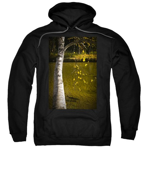 Salmon During The Fall Migration In The Little Manistee River In Michigan No. 0887 Sweatshirt