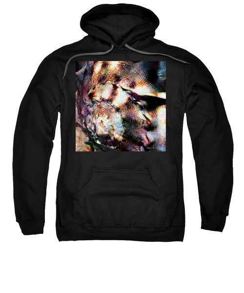 Shell Game Sweatshirt