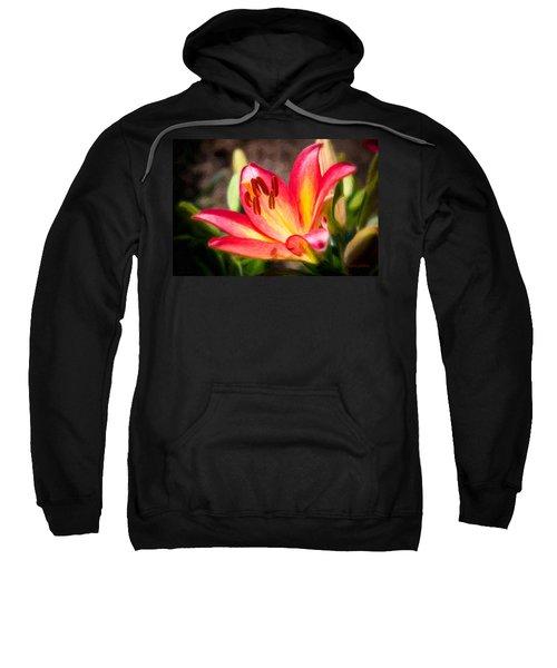 Tiger Lily Sweatshirt