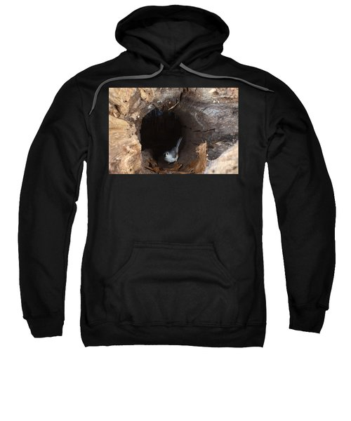 Tufted Titmouse In A Log Sweatshirt by Ted Kinsman