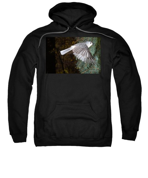 Tufted Titmouse In Flight Sweatshirt by Ted Kinsman