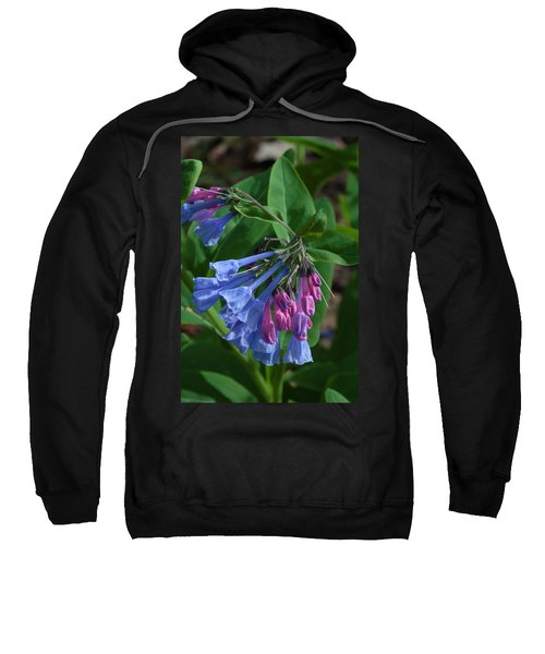 Virginia Bluebells Sweatshirt