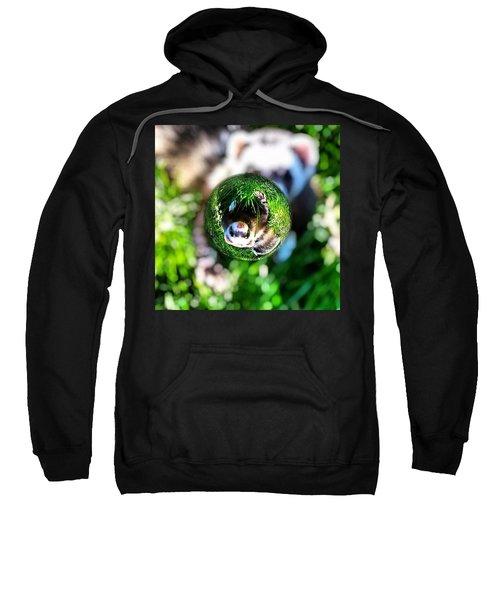 Winnie - A Ferret In A Marble Sweatshirt