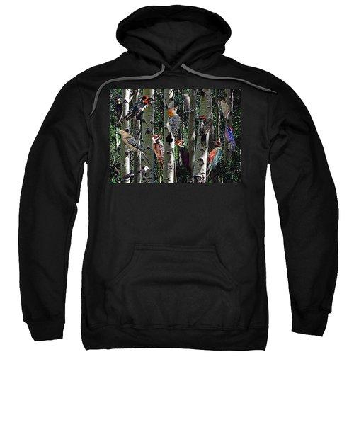 Woodpecker Collage Sweatshirt