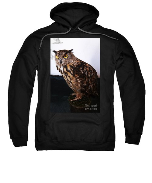Yellow-eyed Owl Side Sweatshirt
