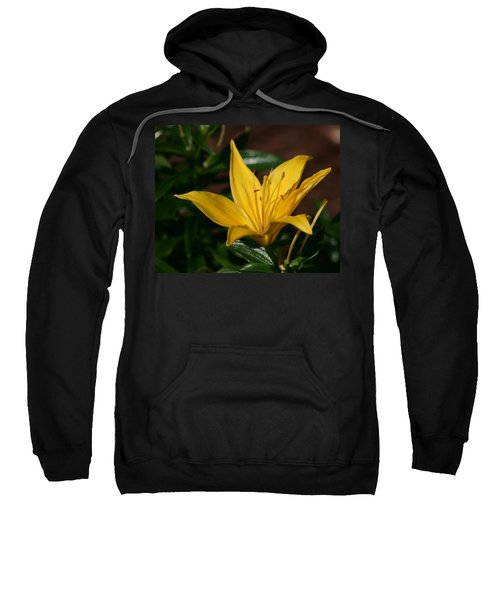 Yellow Lily Sweatshirt by Bill Barber