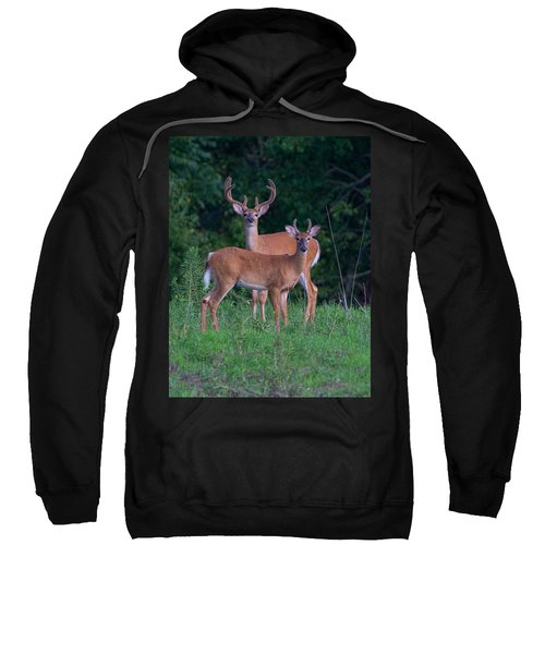 Buck Father And Son Sweatshirt