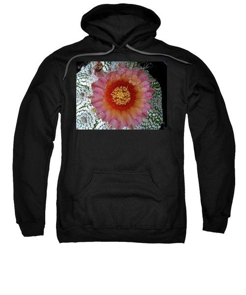 Cactus Flower 5 Sweatshirt