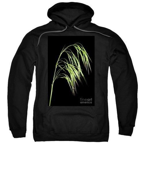 Cheatgrass Sweatshirt