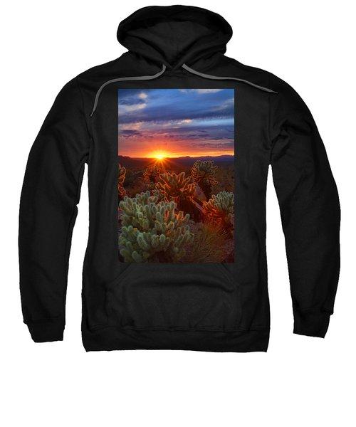 Cholla Sunset  Sweatshirt